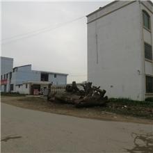 安远县珊瑚食品发展有限公司