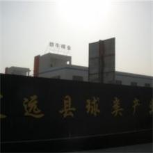 安徽省定远县劲牛球业有限公司