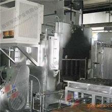 专业供应天然气台车炉