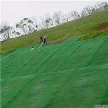 鄂州透水三维植被网土工网垫哪里的质量好