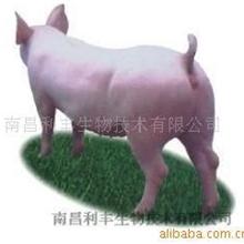 供应猪用饲料添加剂
