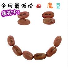 红魔豆批发种子红白魔豆爱情魔豆赠品定做创意礼品定做logo
