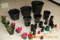 花卉种子营养钵