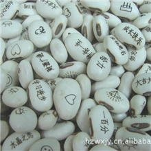 供应爱情魔豆神奇魔豆种子优质白豆种子