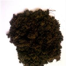 草炭、腐植酸、草炭土、微生物肥料