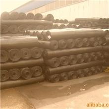 专业双向塑料土工格栅,双向土工格栅,聚丙烯土工格栅