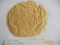 厚金优质供应【水解植物蛋白】100209-45-8