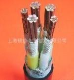 铜芯聚氯乙烯
