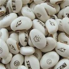 地摊好货源新奇特产品魔豆批发神奇白魔豆种子可定做LOGO礼品