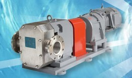 【厂价供应】凸轮不锈钢转子泵