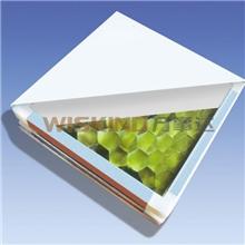 供应彩钢净化板优质净化板玻镁净化板纸蜂窝净化板