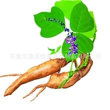散粉-葛根粉解酒、养颜养生粉、粗粮粉、杂粮粉,支持小额批发