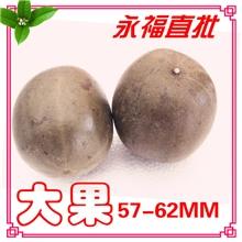 桂林特产罗汉果批发名贵中药材润肺止咳罗汉果茶养生茶