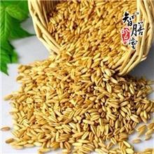 熟制燕麦1kg低温烘焙原料现磨五谷养生粉现磨系列原料