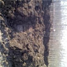 牛粪发酵牛粪生物肥料绿化肥料有机肥