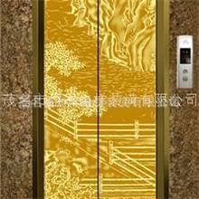 豪华专业电梯厅门装饰图片